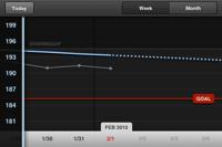 Weightbot graph